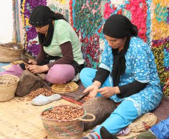 extracting argan nuts
