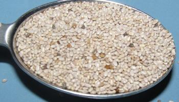 Salba Seeds